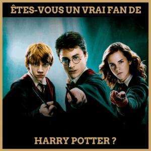 Quiz : Êtes-Vous un Vrai Fan de Harry Potter ?