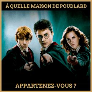 quiz Harry Potter : à quelle maison de Poudlard appartenez-vous ?